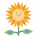 blossom, botanical, flower, nature, petals, sunflower icon