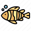 animals, beach, fish, life, sea icon