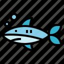 animal, aquatic, life, sea, shark icon