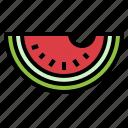 fruit, organic, vegan, watermelon icon