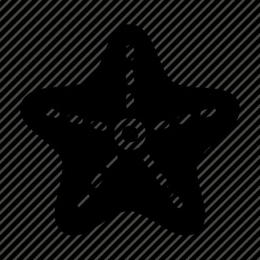animal, sea, starfish icon