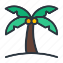 coconut, palm, tree