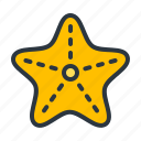 animal, sea, starfish icon