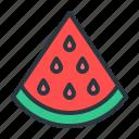 food, fruit, watermelon icon