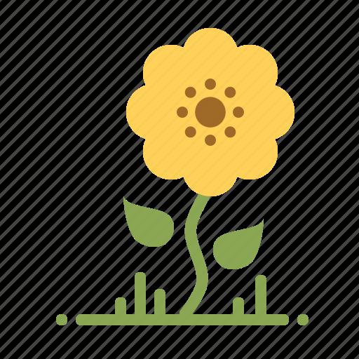 Bloom, blossom, flower, nature, spring, summer, sunflower icon - Download on Iconfinder