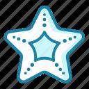 starfish, sea, ocean, star, fish, animal