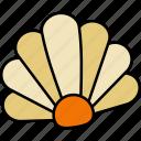 shell, seashell, sea, scallop, shellfish