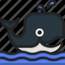 whale, animals, wild, life, zoo, animal, kingdom