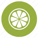 citrus, fruit, lemon, lemon slice, spa treatment, summer icon