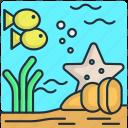 beach, fish, holiday, ocean, sea, seafood, travel