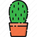 beach, cactus, garden, holiday, nature, summer, travel icon