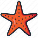 beach, ocean, sea, star fish, summer, vacation, water icon