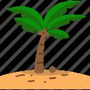 beach, coconut, coconut tree, fresh, sand, sea, summer icon