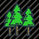 forest, nature, season, summer, tree