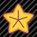 starfish, beach, animal, sea