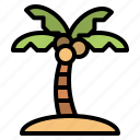 summer, coconut, palm, tree, coconuttree