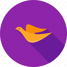 animal, birds, crow, dove, fly, pet, sky icon