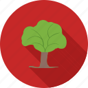 forest, garden, nature, plant, plantation, tree, woods icon