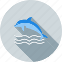 dolphin, fish, marine, ocean, swim, water, whale