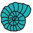 beach, ocean, sea, shell, summer icon