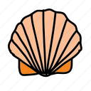 beach, ocean, sea, seashell, summer icon