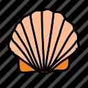 summer, ocean, beach, sea, seashell