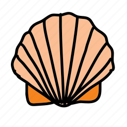 beach, ocean, sea, seashell, summer icon