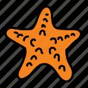 summer, beach, sea, starfish, ocean icon