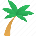coconut, holiday, summer, tree icon