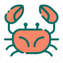 animal, beach, crab, holiday, seafood, summer, vacation icon