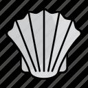 shell, animal, aquatic, aquarium, mollusk, mammal