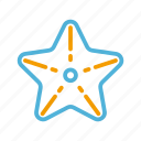 starfish, summer icon