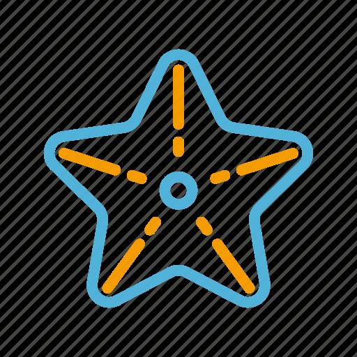 starfish, summer icon