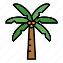 coconut, palm, party, plant, summer, tree