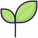 leaf, nature, spring icon