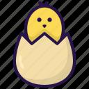 birth, chicken, egg, hatch, incubate, spring icon
