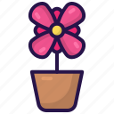 flora, flower pot, garden, plant, pot, spring icon