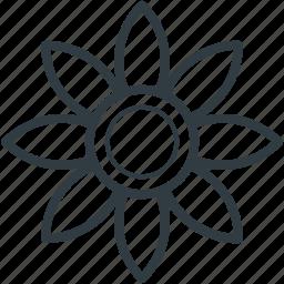 bloom, blossom, flower, gerbera, sunflower icon