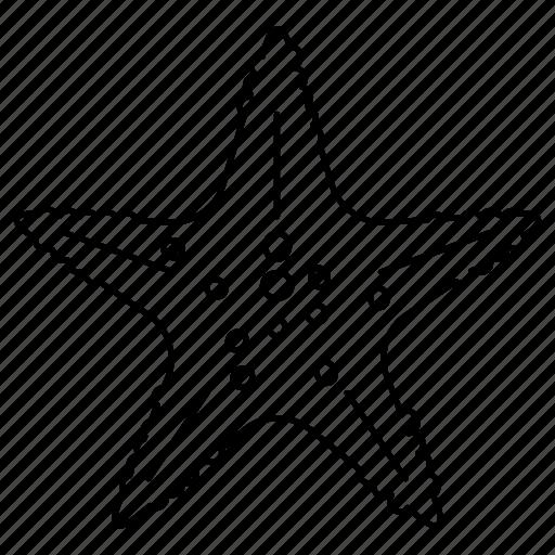 beach, ocean, sea, sea star, star, summer, water icon