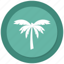 nature, palm, relaxation, tree, tropical, vacation, wave