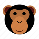 ape, cute, face, happy, head, monkey, zoo