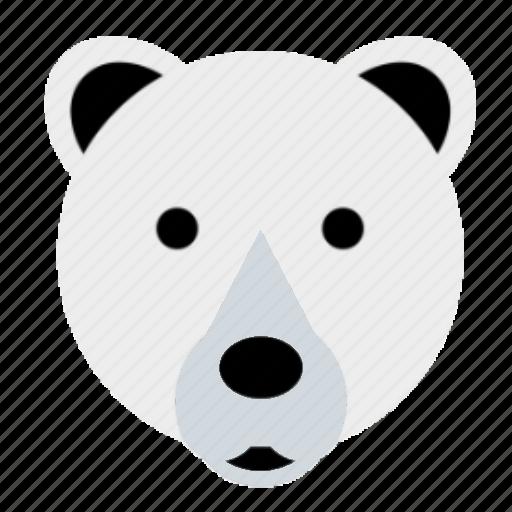bear, cute, face, happy, polar, winter, zoo icon