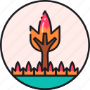 burn, fire, flame, forest, wildfire, wildland, wildland fire icon