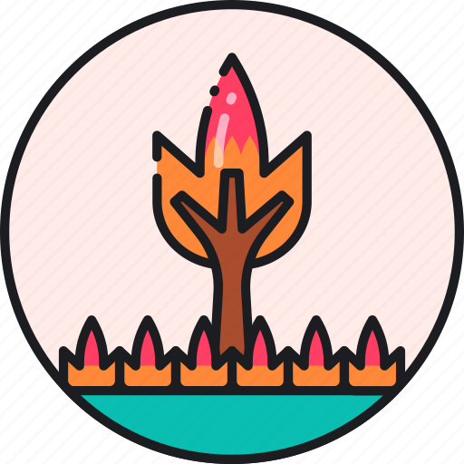 burn, fire, flame, forest, wildfire, wildland, wildland fire icon