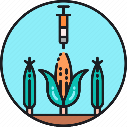 Gmo, artificial, corn, genetic, genetically modified organism, injection, material icon - Download on Iconfinder