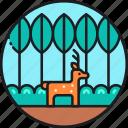 on, life, land, wildlife, deer, animal, nature