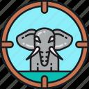 animal, capturing, elephant, hunting, illegal, poaching, wildlife icon