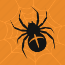 celebration, halloween, holiday, spider, spiderweb icon