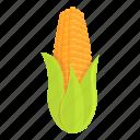 corn, maize, natural