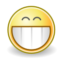 face, grin icon